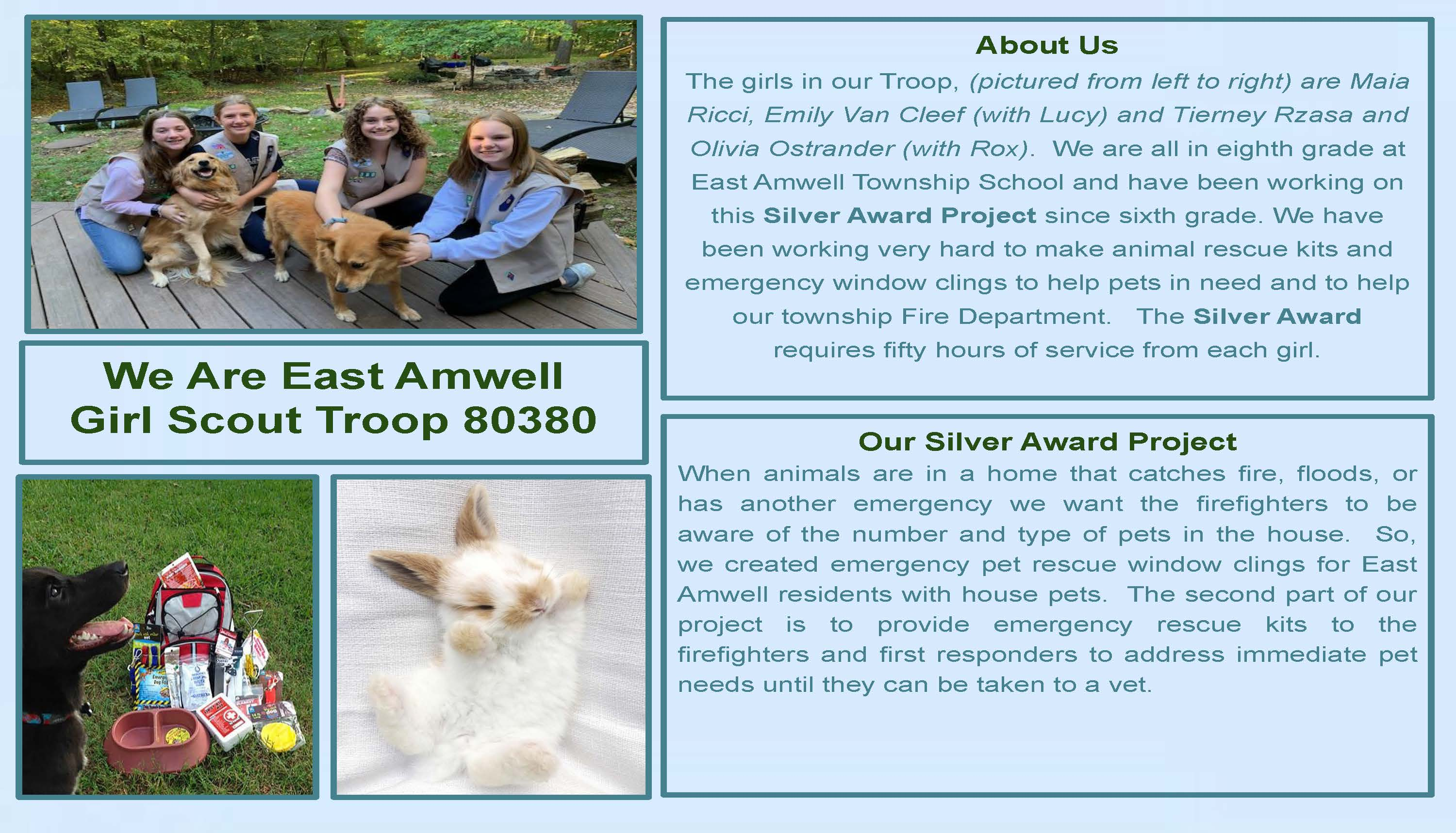 Pet Awareness Girl Scout Silver Award Project page 1