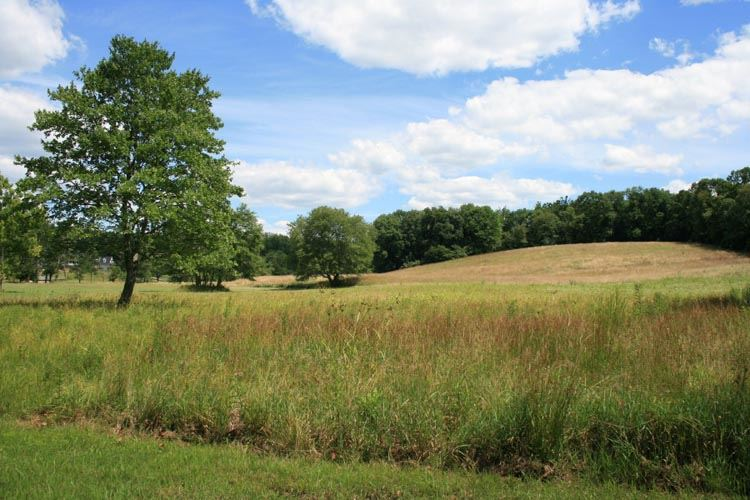 farmland and Open Space Stock Photo