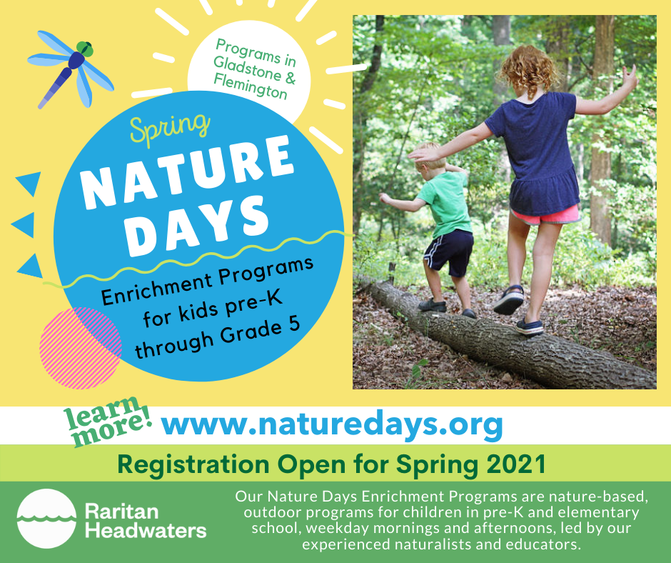 RHW Nature Days Camps Opens in new window